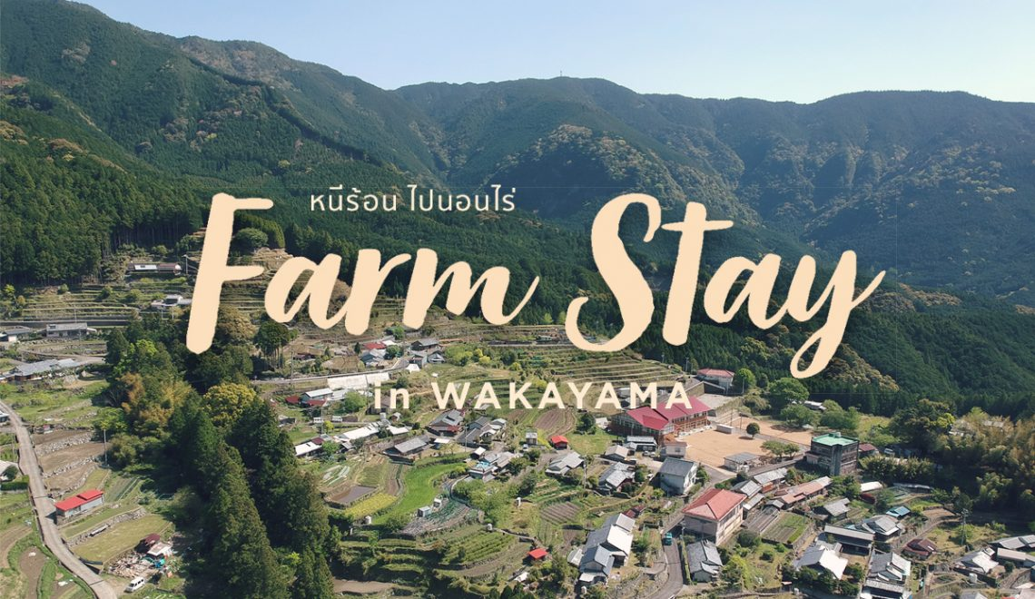 สโลว์ไลฟ์ ใจกลางหุบเขา ที่ Farm Stay, Wakayama